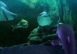 Сцена из фильма Риф 2: Прилив / The Reef 2: High Tide (2012) Риф 2: Прилив сцена 2