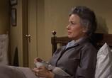 Сцена из фильма Птицы / The Birds (1963) Птицы сцена 8