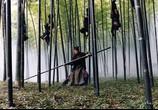 Сцена из фильма Дом летающих кинжалов / House of Flying Daggers (2005) Дом летающих кинжалов