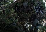 Кадр с фильма Хищник