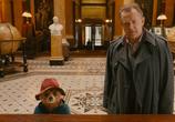 Сцена из фильма Приключения Паддингтона / Paddington (2015)