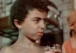 Сцена из фильма Человек-Амфибия (1962) Человек-Амфибия сцена 3