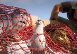 Сцена из фильма Шевели ластами 2  / Sammy's avonturen 2 (2012)