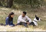 Сцена из фильма Семь жизней / Seven Pounds (2009) 7 жизней