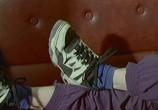Сцена изо фильма Национальные особенности: Коллекция (1995) Национальные особенности: Коллекция картина 04
