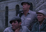 Кадр с фильма Побег с Шоушенка