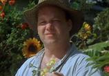 Сцена из фильма Любовная лихорадка / A love Song for Bobby Long (2005) Любовная лихорадка сцена 1