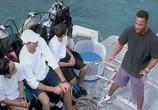 Сцена из фильма Открытое море / Open water (2004) Открытое море сцена 2