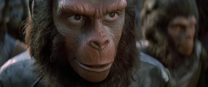 планета обезьян скачать Torrent - фото 6