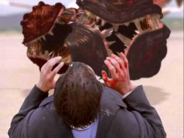 документальный фильм паразитах в человеке