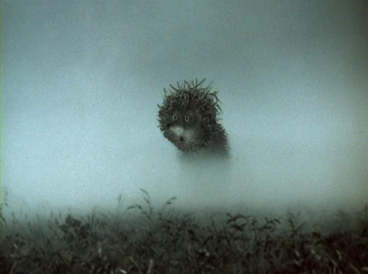 в тумане скачать торрент