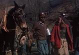 Сцена из фильма Дочь шахтера / Coal Miner's Daughter (1980) Дочь шахтера сцена 2