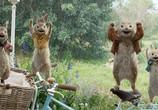 Сцена из фильма Кролик Питер / Peter Rabbit (2018)