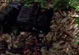 Кадр с фильма Хищник торрент 08507 план 0