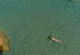 Кадр изо фильма V.A.: Top 00 Europa plus торрент 026764 план 0