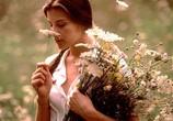 Сцена из фильма Ускользающая красота / Stealing Beauty (1996) Ускользающая красота сцена 2