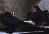 Скриншот фильма Воронье / Kaw (2007) Воронье сцена 4