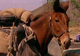 Сцена изо фильма Почтальон / The Postman (1997) Почтальон сценическая площадка 0