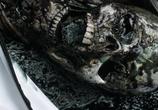 Сцена из фильма Спираль / Helix (2014)