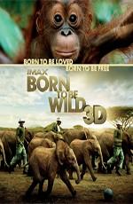 IMAX: Рожденные на воле