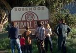 Сцена из фильма Мы купили зоопарк / We Bought a Zoo (2012)