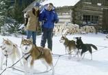Скриншот фильма Снежные псы / Snow Dogs (2002) Снежные псы