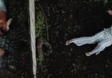 Сцена из фильма Z (2017)