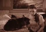 Сцена из фильма Волшебник страны Оз / Wizard of Oz (1939) Волшебник страны Оз
