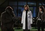Сцена из фильма Посредник / The Middleman (2008) Посредник сцена 3