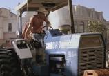Сцена из фильма Зои Харт из южного штата / Hart of Dixie (2011) Зои Харт из южного штата сцена 1