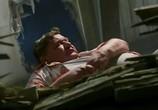 Кадр с фильма СуперБобровы торрент 016260 сцена 0