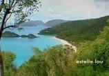Сцена из фильма Открытое море / Open water (2004) Открытое море сцена 3