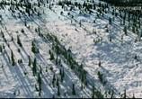 Сцена из фильма Discovery: Аляска: семья из леса / Alaskan Bush People (2014) Discovery: Аляска: семья из леса сцена 2