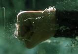Скриншот фильма Матрица: Революция / The Matrix Revolutions (2003)
