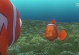 Сцена из фильма В поисках Немо / Finding Nemo (2003)