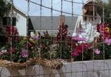 Кадр с фильма Флика торрент 043352 план 0