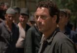 Сцена из фильма В аду / In Hell (2003) В аду сцена 3