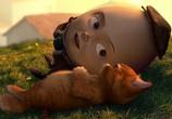 Сцена из фильма Кот в сапогах / Puss in Boots (2011) Кот в сапогах сцена 7