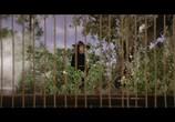 Сцена из фильма Сентиментальный меченосец 3 / Chu Liu Xiang zhi You ling shan zhuang (1981) Сентиментальный меченосец 3 сцена 6