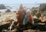 Сцена из фильма Discovery: Аляска: семья из леса / Alaskan Bush People (2014) Discovery: Аляска: семья из леса сцена 6
