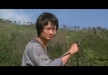 Сцена из фильма Обезьянье кунг-фу / Chu long ma liu (1979) Обезьянье кунг-фу сцена 6