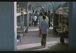 Сцена из фильма Цвет Рая / Rang-e khoda (1999) Цвет Рая сцена 1