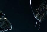 Сцена из фильма Чужой против Хищника / Alien vs. Predator (2004) Чужой против Хищника