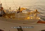 Кадр изо фильма Мамма MIA! торрент 0687 люди 0