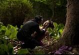 Сцена из фильма Кожа, в которой я живу / La piel que habito (2011) Кожа, в которой я живу сцена 3