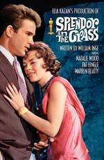 Постер к фильму Великолепие в траве