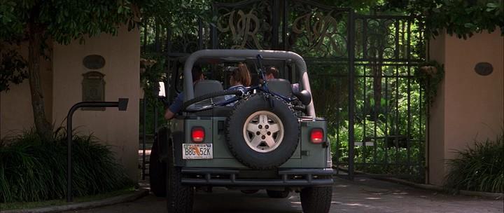 Скачать фильм Дикость 1998 через торрент