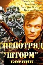 Постер к фильму Спецотряд «Шторм»