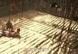 Сцена из фильма Полицейская история 2013 / Jing Cha Gu Shi 2013 (2013) Полицейская история 2014 сцена 6