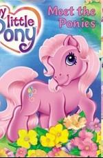 Постер к фильму Мой маленький пони - Встреча с пони
